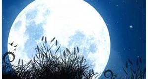 tarot lunar